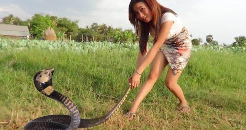 柬埔寨妹紙 另類陷阱捕蛇法,令人傻眼。。