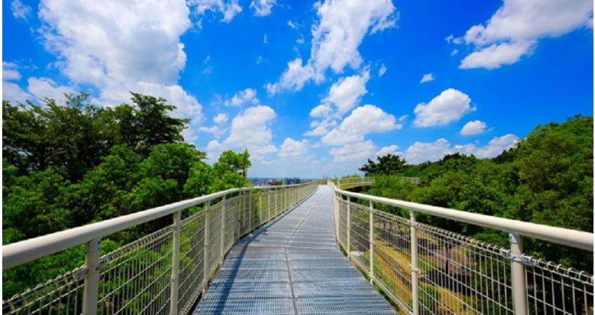 彰化都沒進步?天空步道花8600萬 2年淪「蚊子橋」