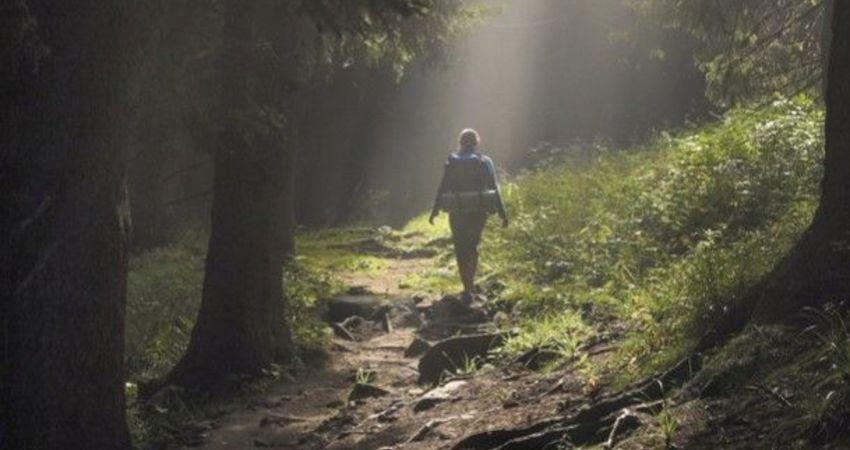 男子山中走失20天奇蹟生還遇到「魔神仔」?可能是身體在求救