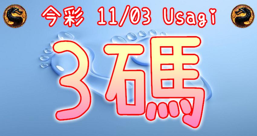 今彩539 2020/11/03 Usagi 精選3碼 全車 供您參考