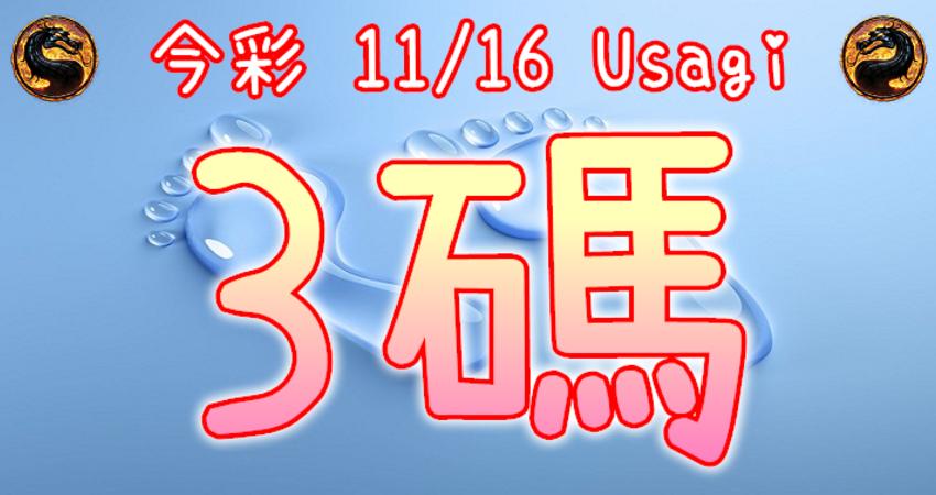 今彩539 2020/11/16 Usagi 精選3碼 全車 供您參考