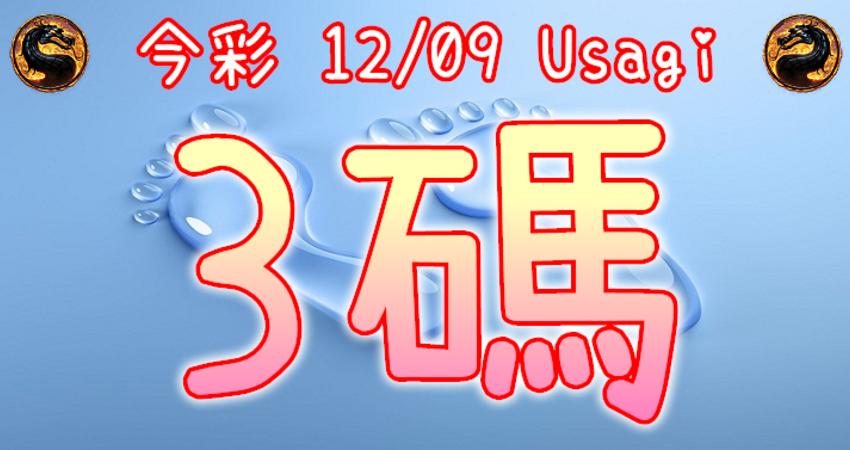 今彩539 2020/12/09 Usagi 精選3碼 全車 供您參考