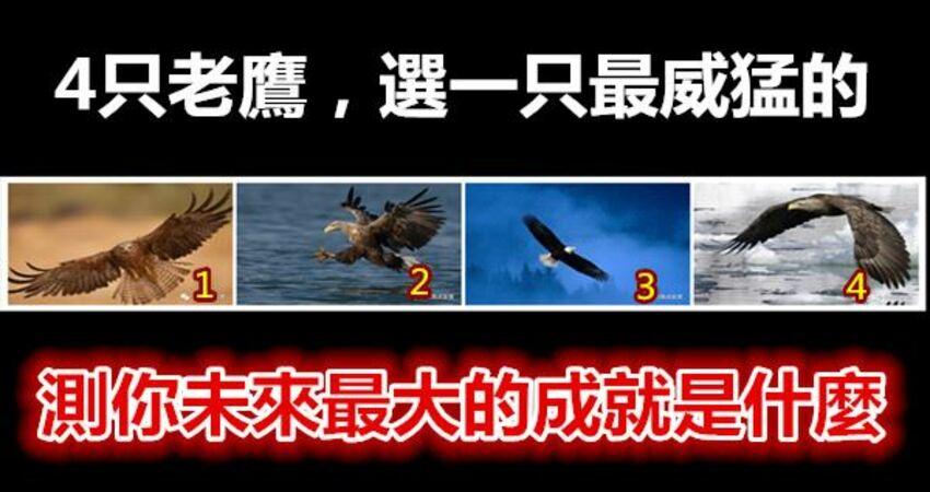 4隻老鷹,選一隻最威猛的,測你未來最大的成就是什麼