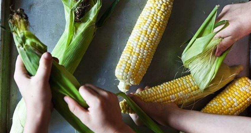 煮玉米的水不要倒掉了,它的這6大妙用,能為你省下不少錢!