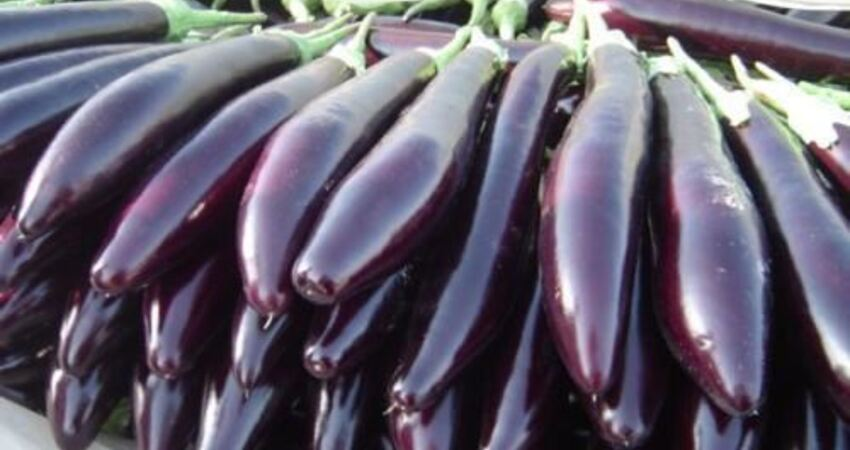 春夏交接別錯過這種紫色食物,可最有營養的部分,很多人卻扔了