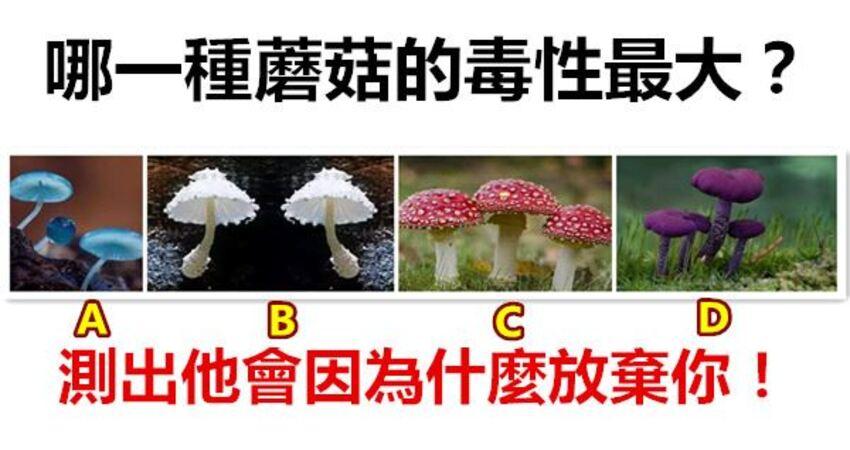 哪一種蘑菇的毒性最大?測出他會因為什麼放棄你!