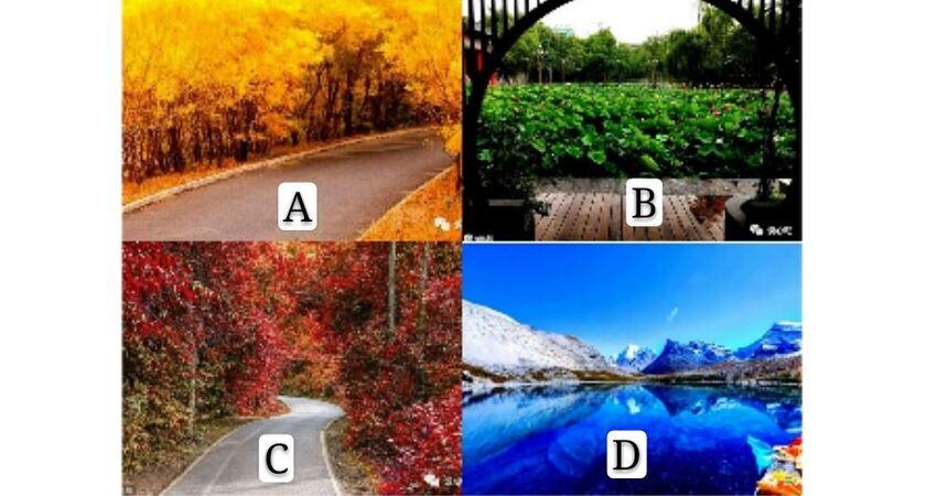 你最歡哪處美景?測你在哪個年齡段會變的最富有?