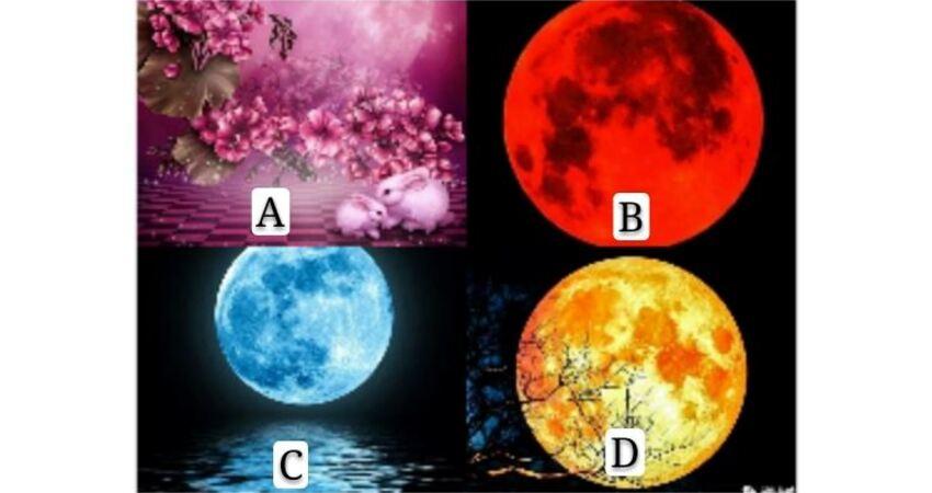 你覺得哪個月色畫面最好?測試你的夫妻感情還好嗎?