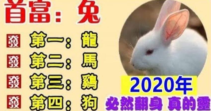 2020年財運最好的生肖,必然翻身,真的靈!