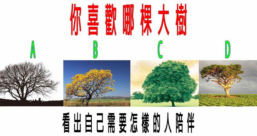 心理學:你喜歡哪棵大樹?看出自己需要怎樣的人陪伴