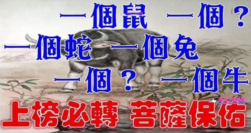 (菩薩誕辰)農曆六月十九要格外留心了,一個鼠,一個?,一個蛇,一個兔,一個?,一個牛必須轉啊