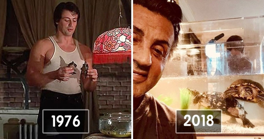 《洛基》烏龜演員還活著 席維斯史特龍44年後曬合照:2隻都很健在