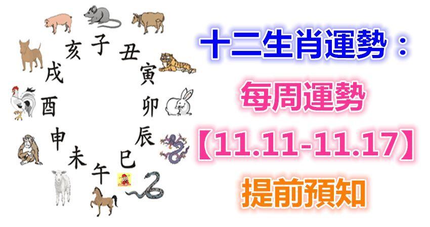 十二生肖運勢:每周運勢【11.11-11.17】提前預知!
