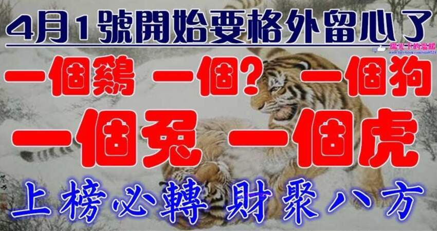 4月1號開始要格外留心了,一個雞,一個?,一個狗,一個兔,一個虎必須轉啊