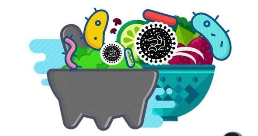 發燒、腹瀉甚至敗血症?藏在你家冰箱的這種細菌,究竟有多可怕