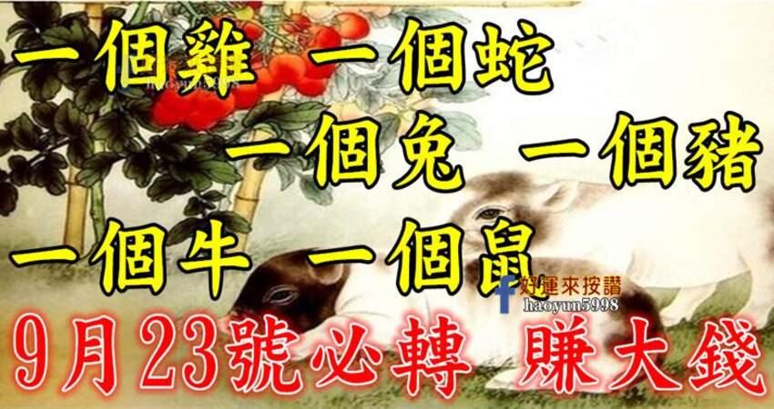9月23號要格外留心了,一個雞,一個蛇,一個兔,一個豬,一個牛,一個鼠必轉