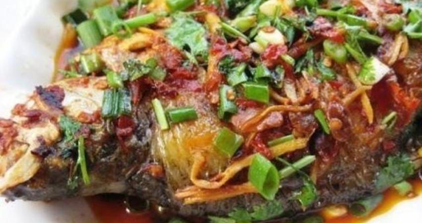 豆瓣醬紅燒魚的做法,每天15分鐘的時間,不僅飽腹,還能益筋骨